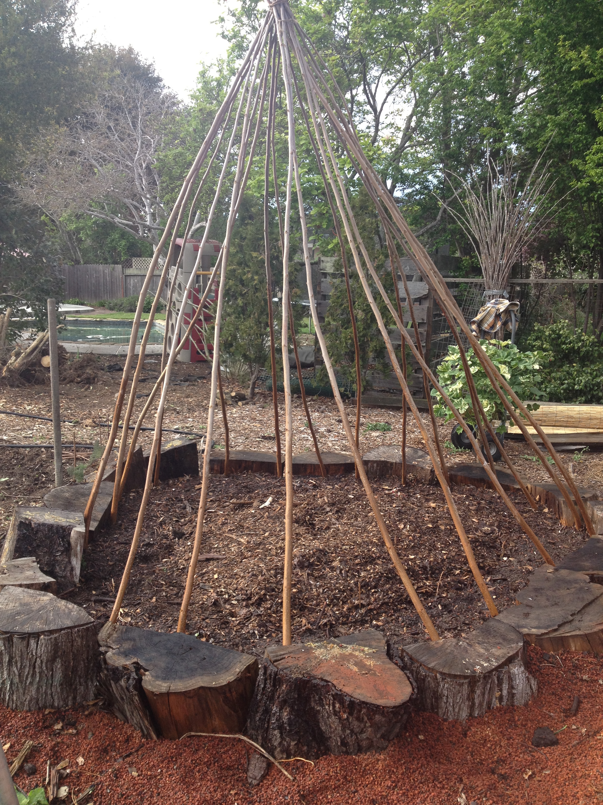 Building A Bean Teepee Local Dirt